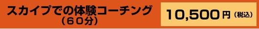 スカイプでの体験コーチング (60分)10,500円(税込)